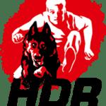 Hard Dog Race Team