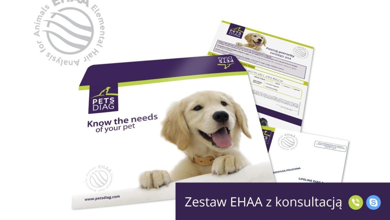 PetsDiag łączy siły z HDR Polska dla zdrowia zawodników i ich pupili